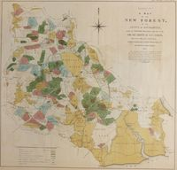 A Map Of The New Forest, In The County Of Southampton ... 1873 : Richardson, King & Driver